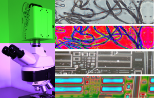 mikroskopie intro